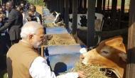 PM Modi gifts 200 cows to Rwanda village