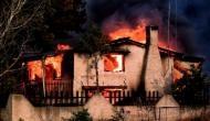 ग्रीस के जंगलों में लगी आग ने मचाया तांडव, राजधानी एथेंस में झुलसकर 20 लोगों की मौत