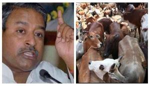 Alwar Mob Lynching: 'Muslims should think before touching cow', says BJP leader Katiyar