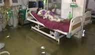 Video: बिहार के सुशासन की खुली पोल, नालंदा अस्पताल के ICU में बेड पर मरीज-नीचे मछलियां