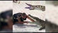 Watch Video: Crocodile attacks zoo-keeper's hand at Phokkathara Crocodile Farm in Thailand