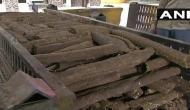 Chhattisgarh: Raipur introduces 'eco-friendly' wood logs for funerals