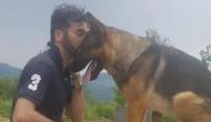 इटली में कुत्ते की मौत पर पूरे देश में शोक की लहर, इस वजह से सबका था 'हीरो डॉगी'
