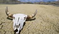 World Record: This Death Valley in California is the hottest place on planet Earth