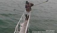 समुद्र में रिसर्च करने गए शोधकर्ता पर शार्क ने किया हमला, वीडियो देख उड़ जाएगी नींद