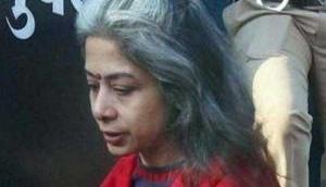 Sheena Bora murder case: Indrani Mukerjea argues in court over her bail application; asks