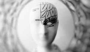 Brain proteins help to understand epilepsy
