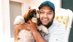 कपिल शर्मा ऐसे करेंगे टीवी पर धमाकेदार कमबैक, फिर से आप हंस-हंस कर हो जाएंगे लोट-पोट