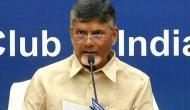 Andhra CM directs CRDA officials to beautify Krishna River bunds