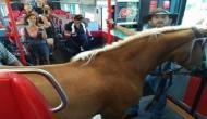 घोड़े को लेकर ट्रेन के कोच में घुसा शख्स और फिर लोगों ने...