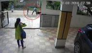 Video: पांच साल के मासूम पर भूखे शेर की तरह झपटा कुत्ता और....