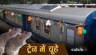 ट्रेन में यात्री को चूहे ने काटा तो रेलवे को देना पड़ा 25 हजार रुपये का हर्जाना