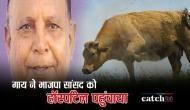 गुजरात: गाय ने भाजपा सांसद को हॉस्पिटल के आईसीयू में पहुंचाया, जानिए पूरा मामला