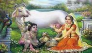 Janmashtami 2018: पूजा के दौरान इन बातों का रखें ध्यान, खुश होंगे कान्हा, मिलेगी सुख-समृद्धि