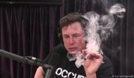 Tesla के CEO एलन मस्क की इस हरकत के विरोध में 2 अफसरों का इस्तीफा, शेयर में भी गिरावट