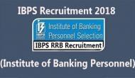 IBPS RRB Admit card 2018: ऐसे करें डाउनलोड, जानें परीक्षा की ये जरूरी बातें