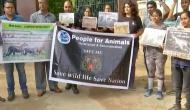 NGOs protest against Maharashtra's forest department shoot-at-sight order for a man-eater tigress