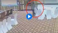 Watch Video: Pakistani bureaucrat Zarar Haider Khan caught on camera stealing wallet of Kuwaiti delegate