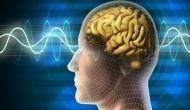 Human brain can detect changes in Earth's magnetic field: Study