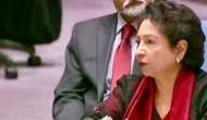UN में पाक का नया पैंतरा, बोला- हमारी जमीन से नहीं भारत से आ रहा आतंकवाद..