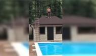 छत से स्विमिंग पूल में कूदना इस शख्स को पड़ा भारी, मस्ती के चक्कर ऐसी करा बैठा चेहरे की हालत