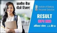 IBPS RRB Officer scale I, II और III का रिजल्ट जारी, ibps.in पर ऐसे करें चेक