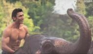 Junglee Teaser out, Vidyut Jammwal starring Chuck Russell's film is all about an family that is beyond your imagination