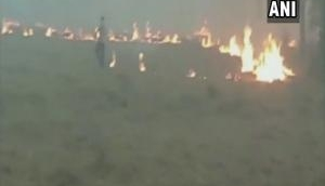 Amid pollution rise farmers continue to burn stubble in Haryana