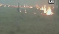 Amid air pollution concerns, farmers in Amritsar continue stubble burning