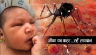 Zika वायरस ने मचाया हड़कंप, इस शहर में 4 लाख लोगों की हुई जांच, नहीं है कोई इलाज