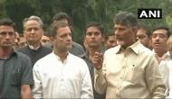 Lok Sabha election: Rahul Gandhi led Congress announces alliance with Chandrababu Naidu's TDP 'to save Indian democracy'