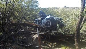 एक्सीडेंट के बाद पेड़ पर लटक गई कार, 6 दिन बाद अंदर का नजारा देखकर उड़ गए पुलिस के होश