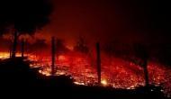कैलिफोर्निया में अब तक की सबसे भयावह आग, मरने वालों की संख्या बढ़कर 65 हुई, लाखों हुए बेघर