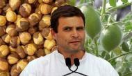 'राहुल गांधी को पता नहीं कि चने का पेड़ होता है या पौधा और वो घूम-घूमकर किसानी सिखा रहे हैं'