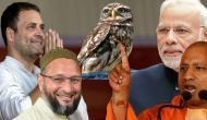 न मोदी-योगी न ही राहुल और ओवैसी हैं जीत की गारंटी, अब 'उल्लू' करेगा चुनावी बेड़ा पार!