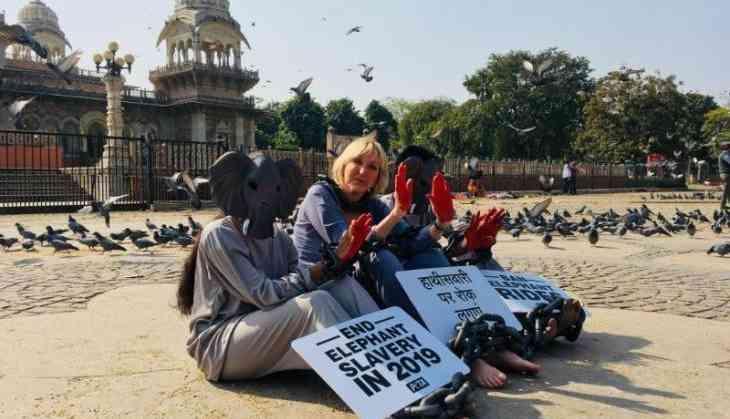 PETA Founder Ingrid Newkirk Demands Ban on Elephant Rides