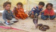 यहां हर घर में पाले जाते हैं खतरनाक सांप, कोबरा सांपों की होती है पूजा