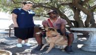 मालिक की जान बचाने को लुटेरों से भिड़ गया बहादुर कुत्ता, लहूलुहान होने के बाद भी किया डटकर मुकाबला