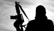Kashmiri man who left home to join Hizbul Mujahidin held, arms recovered