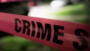 Bihar Shocker: Mentally ill man kills four children; know the reason