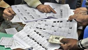 Lok Sabha Election: यहां बनेगा देश का सबसे छोटा पोलिंग बूथ, सिर्फ एक महिला देगी वोट