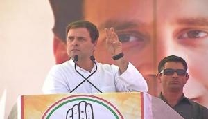 Lok Sabha Elections 2019: Rahul Gandhi promises special category status to Andhra, if voted to power