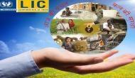 LIC ने लांच किया जबरदस्त स्कीम, सिर्फ 1300 के निवेश पर मिलेगा 62 लाख रूपये का बड़ा अमाउंट