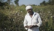 Telangana: EC on its toes to arrange jumbo EVMs as farmers take on political bigwigs
