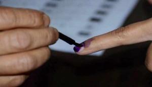 अगर मतदाता के हाथ ना हों तो कहां लगेगी स्याही? जानें चुनाव से जुड़ा रोचक तथ्य