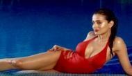 अमीषा पटेल ने हॉट लुक से लगा दी पानी में आग, शेयर की रेड स्विमसूट में फोटो और..