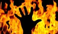 Madhya Pradesh: 3 dead, 25 injured, crops destroyed in massive fire