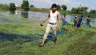 Noida based engineer quit his Job with an MNC, to revive ponds