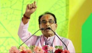 BJP took corrective steps in MP, Chhattisgarh and Rajasthan, won LS polls: Shivraj Singh Chauhan