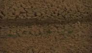 देवगढ़ में पानी की एक-एक बूंद को तरस रहे लोग, जमीन से पानी की जगह निकल रहे हैं पत्थर